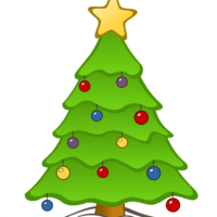 Freshly Cut Christmas Trees Are In Stock Now