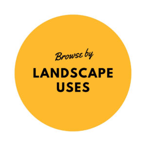Browse By Landscape Uses
