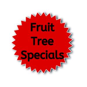 FRUIT TREE SPECIALS